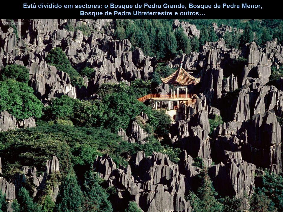 Está dividido em sectores: o Bosque de Pedra Grande, Bosque de Pedra Menor, Bosque de Pedra Ultraterrestre e outros…