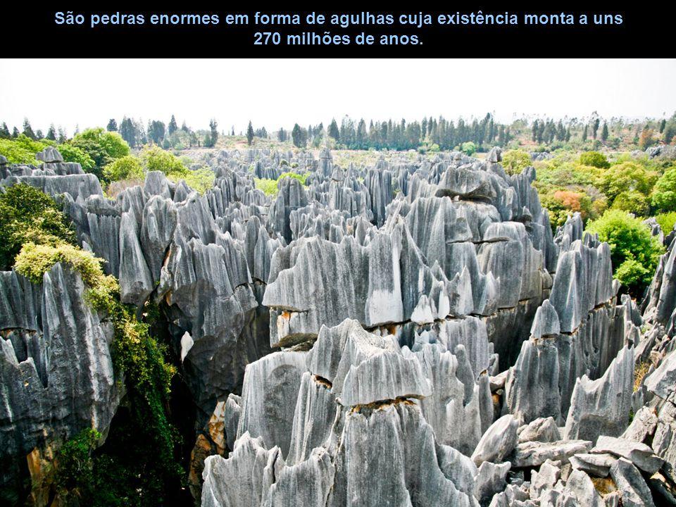 São pedras enormes em forma de agulhas cuja existência monta a uns 270 milhões de anos.