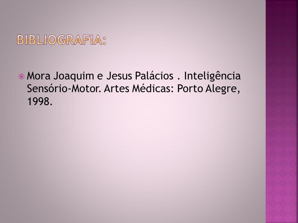 Bibliografia: Mora Joaquim e Jesus Palácios . Inteligência Sensório-Motor.