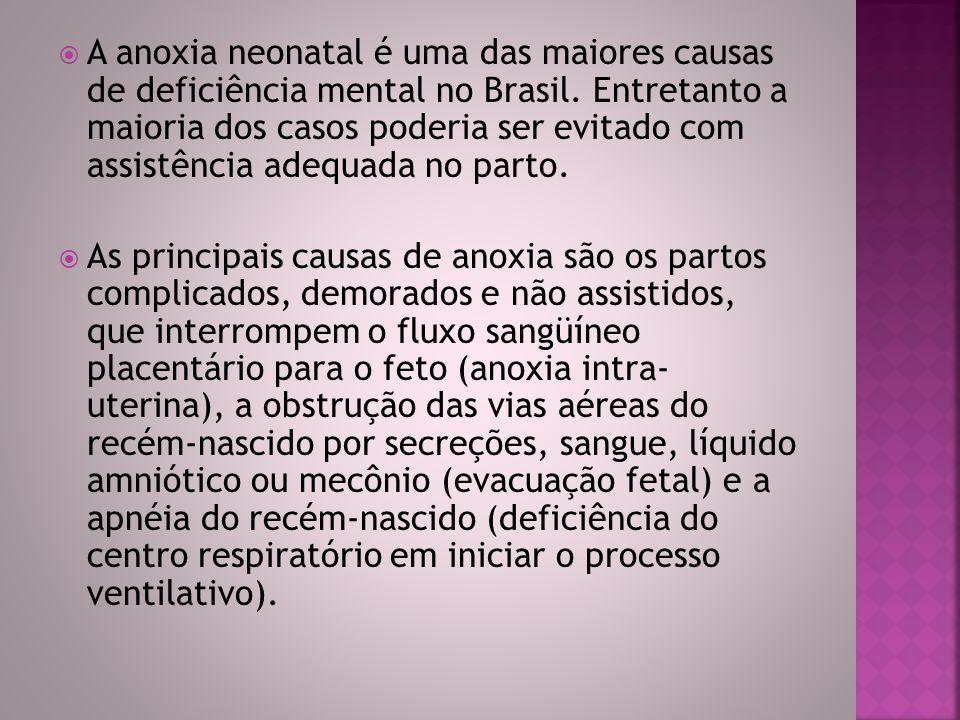 A anoxia neonatal é uma das maiores causas de deficiência mental no Brasil. Entretanto a maioria dos casos poderia ser evitado com assistência adequada no parto.