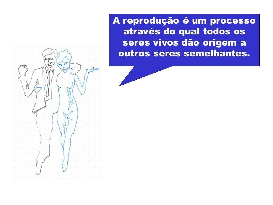 A reprodução é um processo através do qual todos os seres vivos dão origem a outros seres semelhantes.