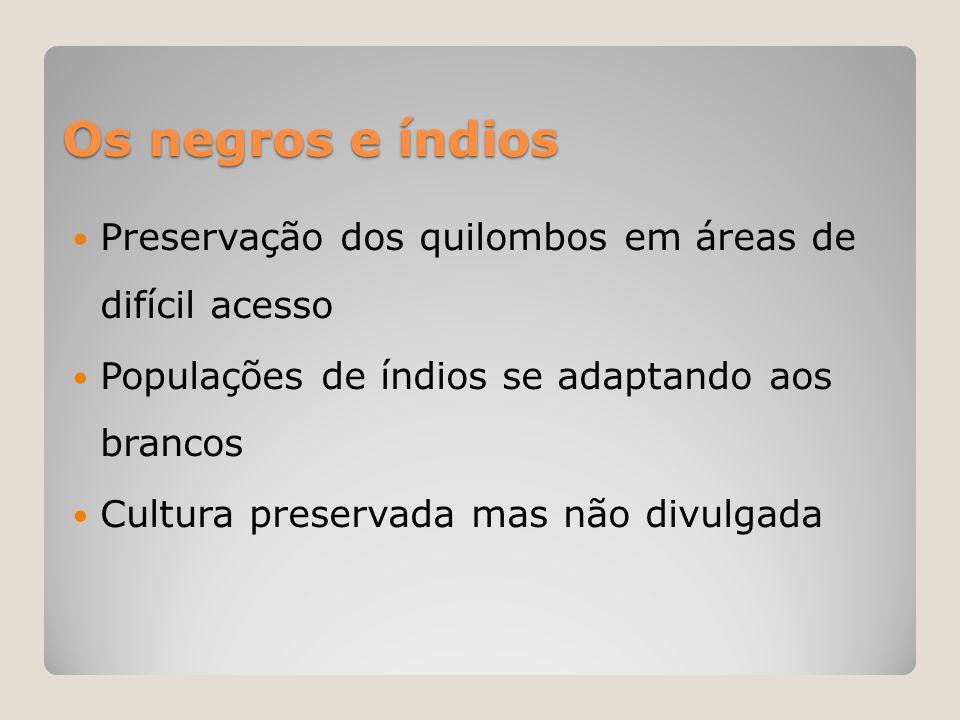 Os negros e índios Preservação dos quilombos em áreas de difícil acesso. Populações de índios se adaptando aos brancos.