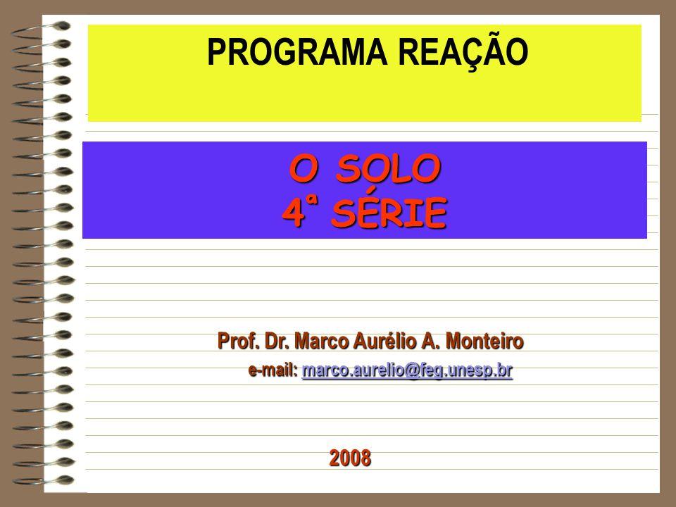 O SOLO 4ª SÉRIE PROGRAMA REAÇÃO Prof. Dr. Marco Aurélio A. Monteiro