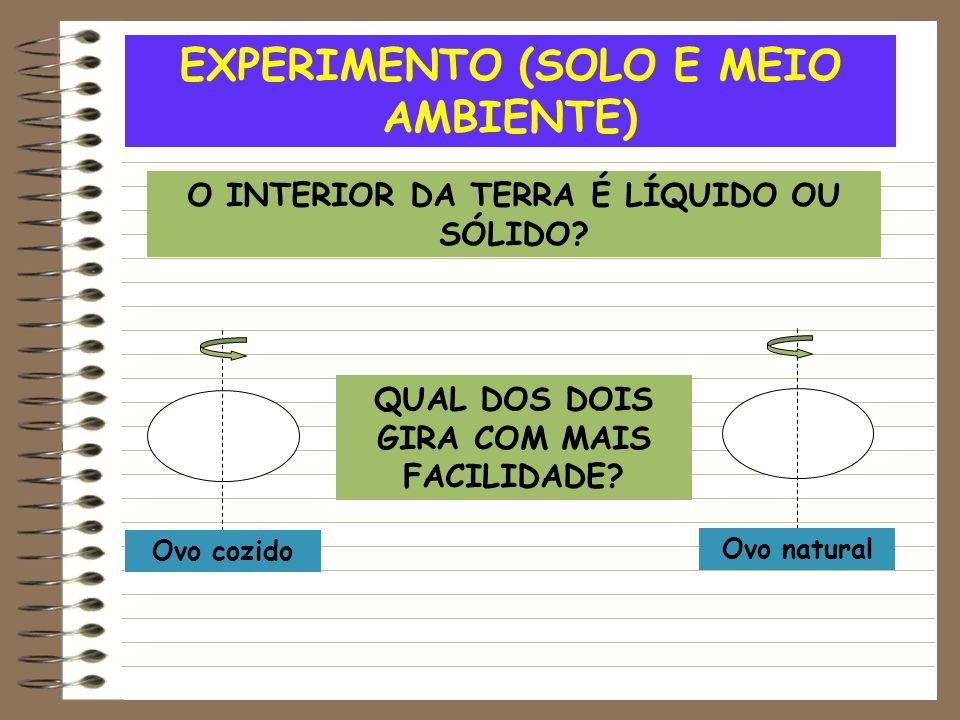 EXPERIMENTO (SOLO E MEIO AMBIENTE)