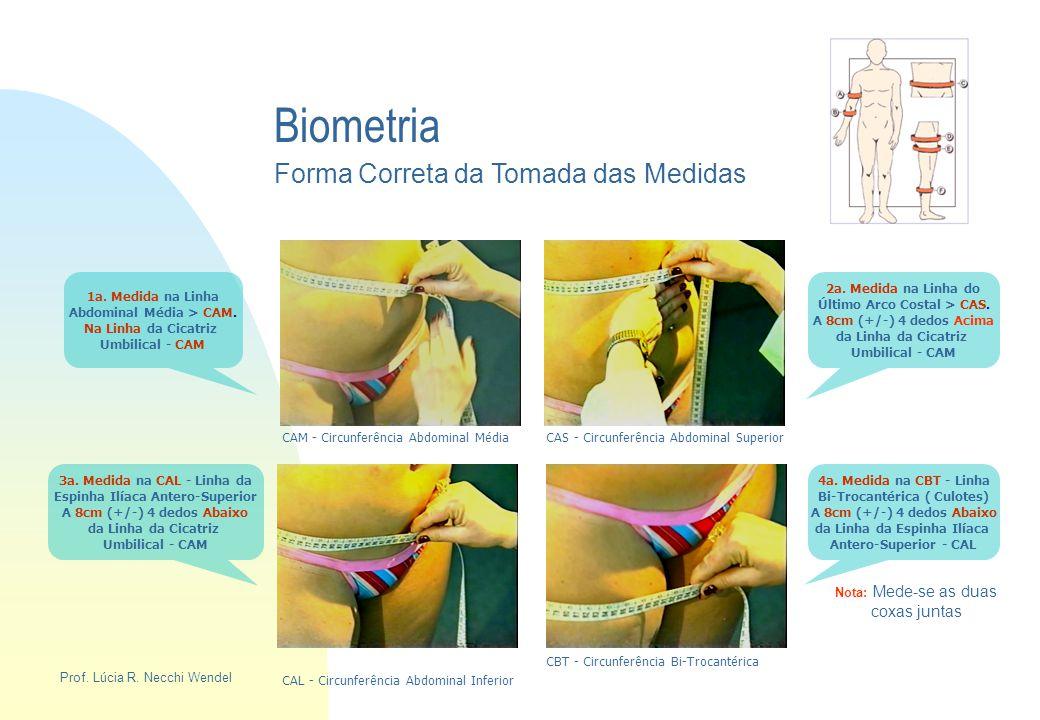 Biometria Forma Correta da Tomada das Medidas coxas juntas
