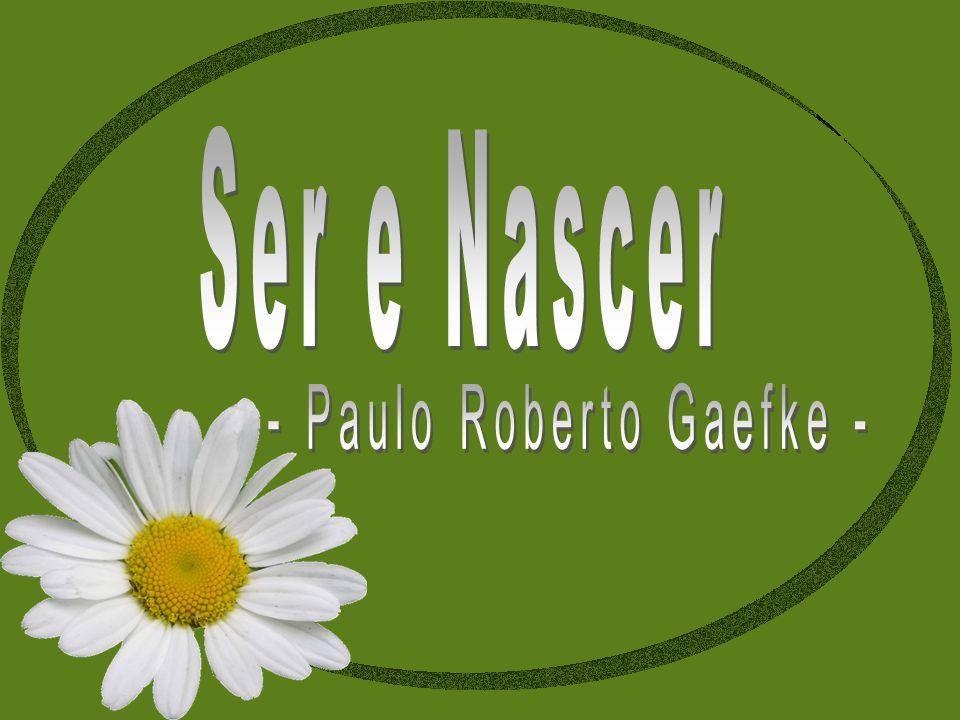 - Paulo Roberto Gaefke -