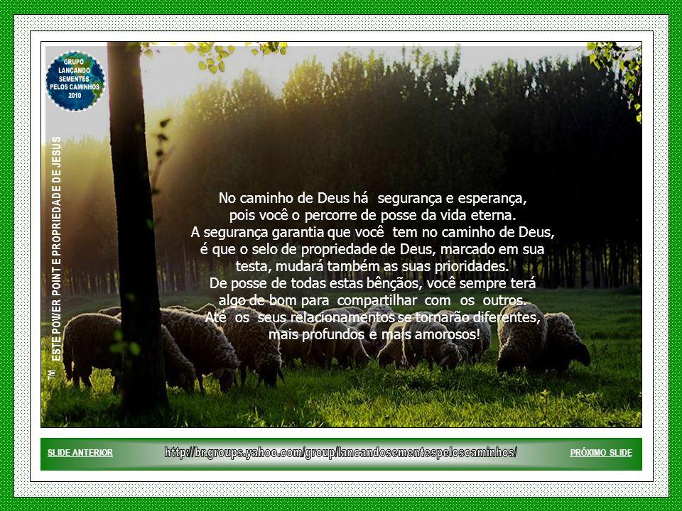 ™ ESTE POWER POINT E PROPRIEDADE DE JESUS