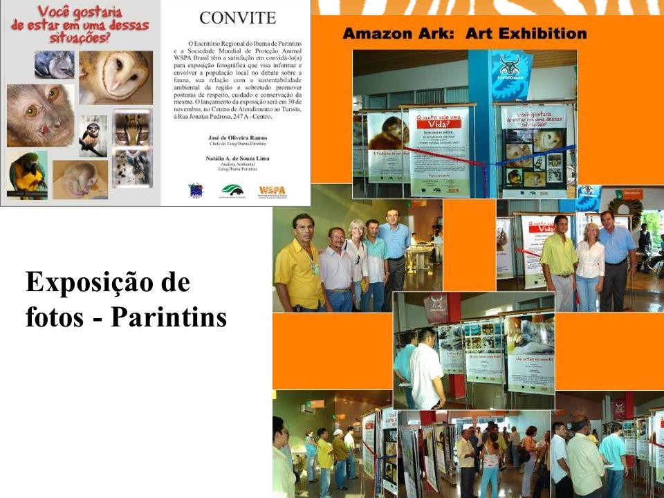 Exposição de fotos - Parintins