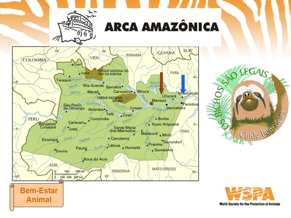ARCA AMAZÔNICA Bem-Estar Animal