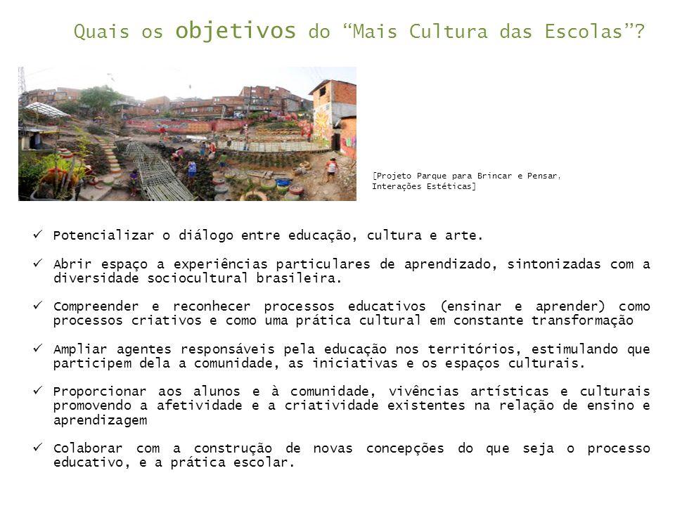 Quais os objetivos do Mais Cultura das Escolas