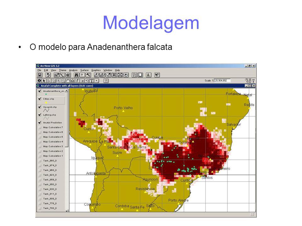 Modelagem O modelo para Anadenanthera falcata