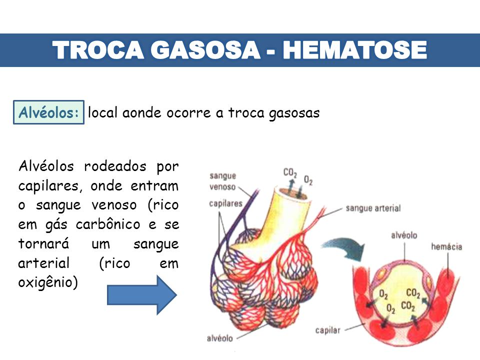 TROCA GASOSA - HEMATOSE