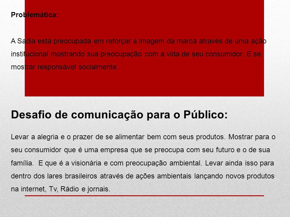 Desafio de comunicação para o Público: