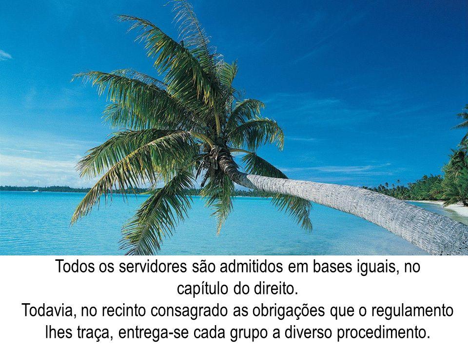 Todos os servidores são admitidos em bases iguais, no capítulo do direito.