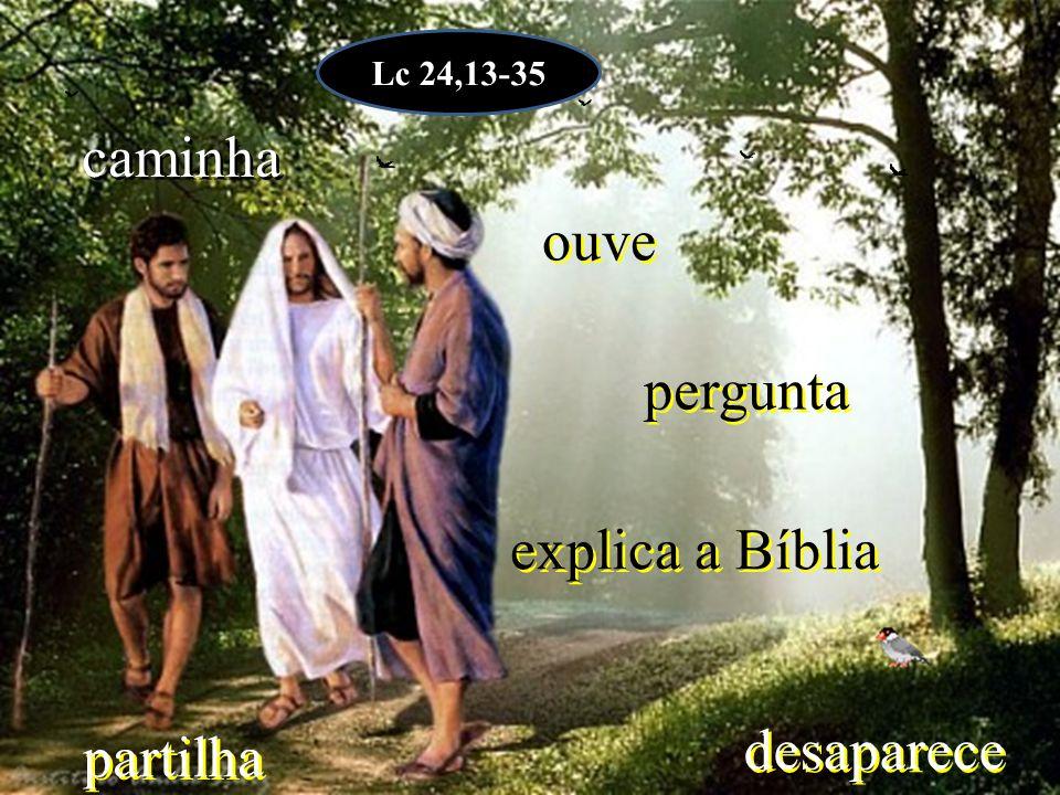 Lc 24,13-35 caminha ouve pergunta explica a Bíblia desaparece partilha