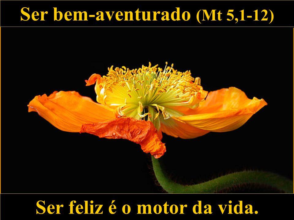 Ser bem-aventurado (Mt 5,1-12) Ser feliz é o motor da vida.