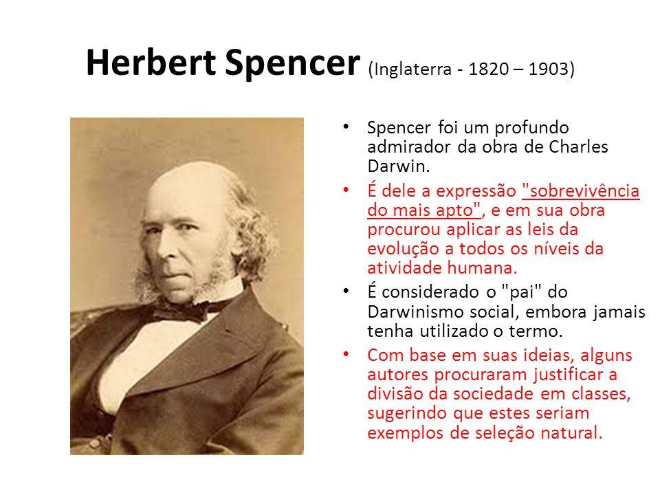 Herbert Spencer (Inglaterra - 1820 – 1903)