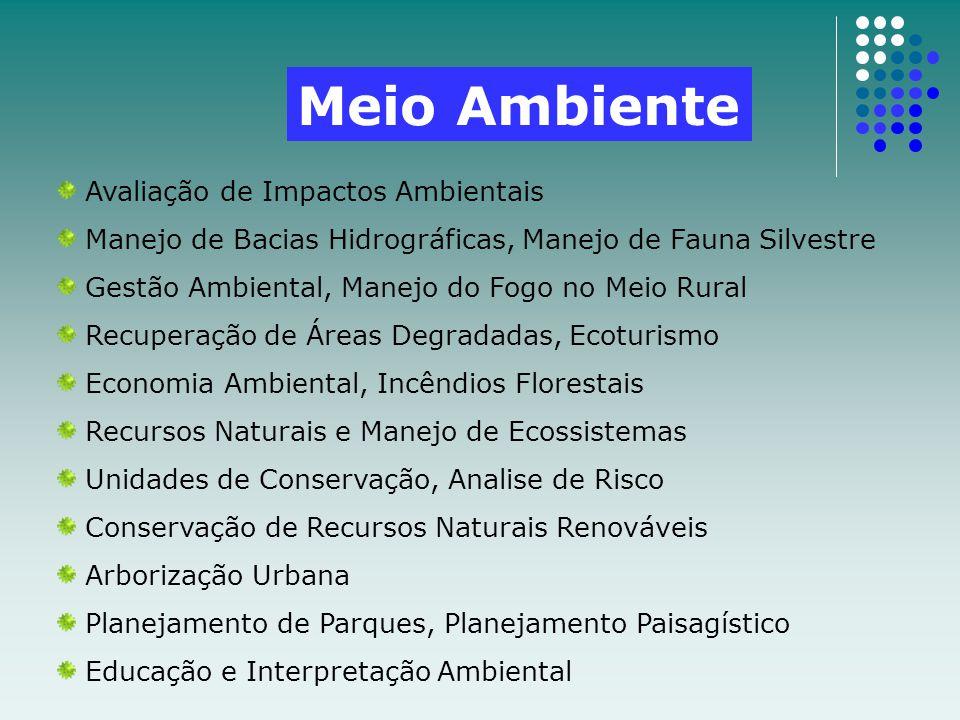 Meio Ambiente Avaliação de Impactos Ambientais