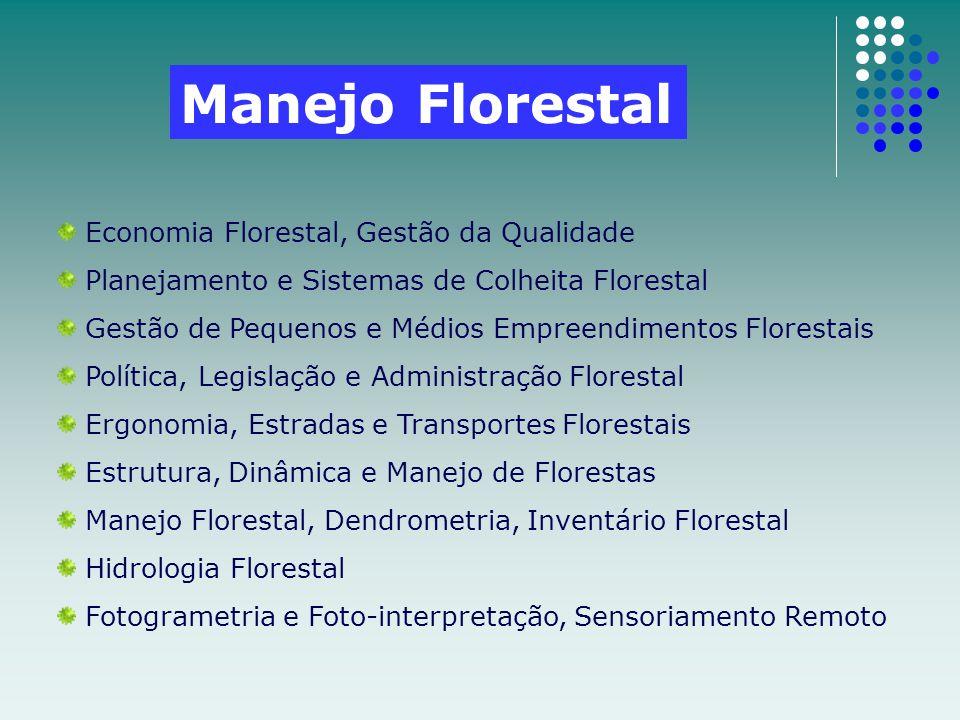 Manejo Florestal Economia Florestal, Gestão da Qualidade