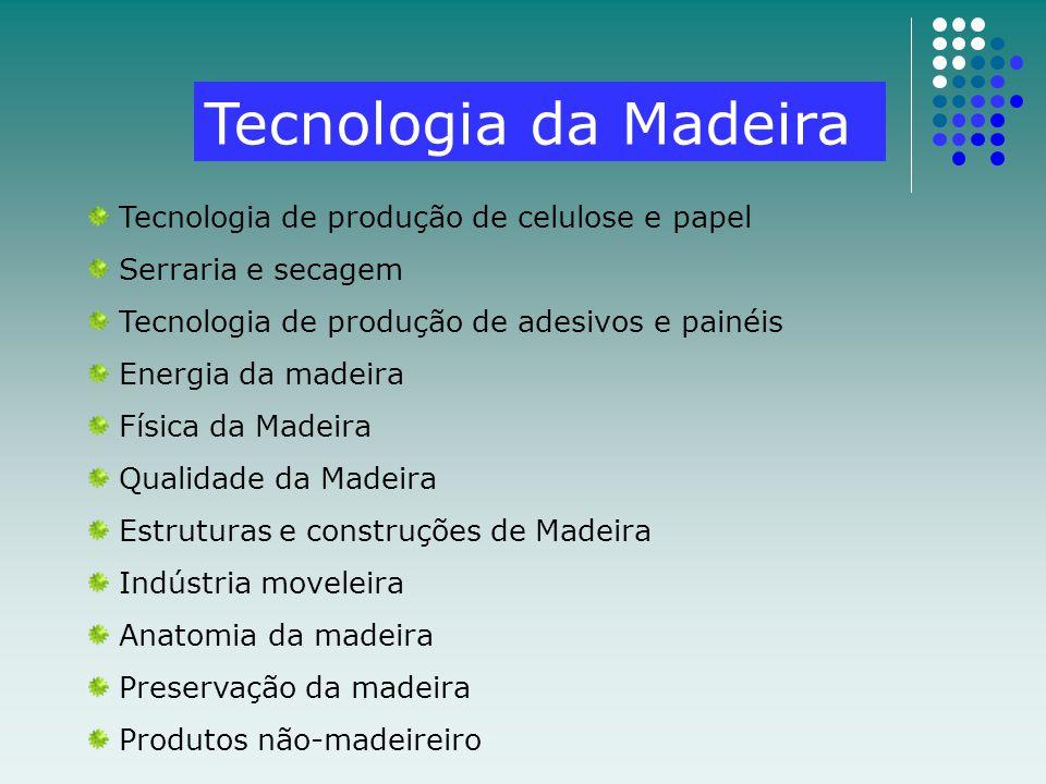 Tecnologia da Madeira Tecnologia de produção de celulose e papel