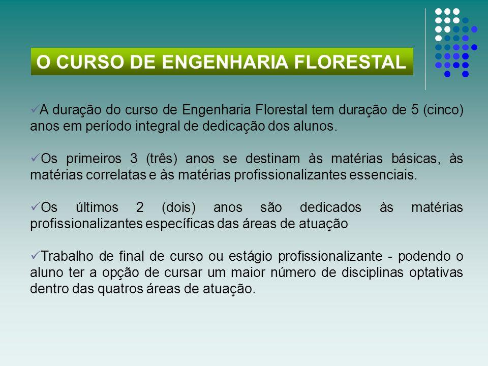 O CURSO DE ENGENHARIA FLORESTAL
