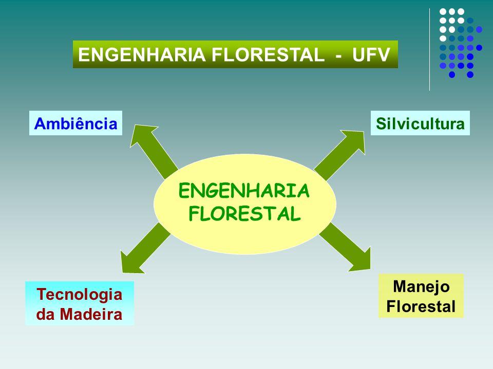 ENGENHARIA FLORESTAL - UFV