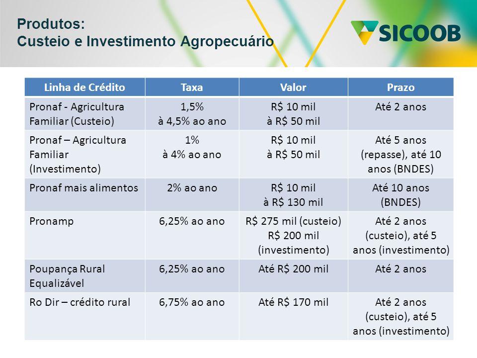 Produtos: Custeio e Investimento Agropecuário