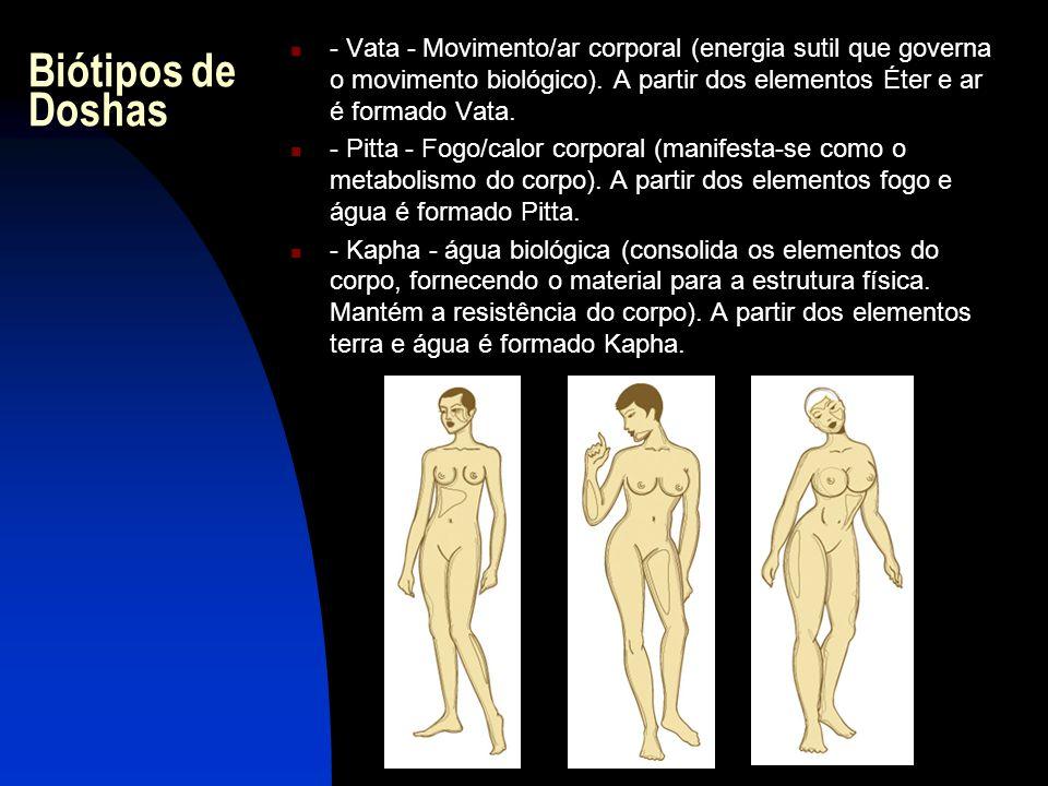 Biótipos de Doshas - Vata - Movimento/ar corporal (energia sutil que governa o movimento biológico). A partir dos elementos Éter e ar é formado Vata.