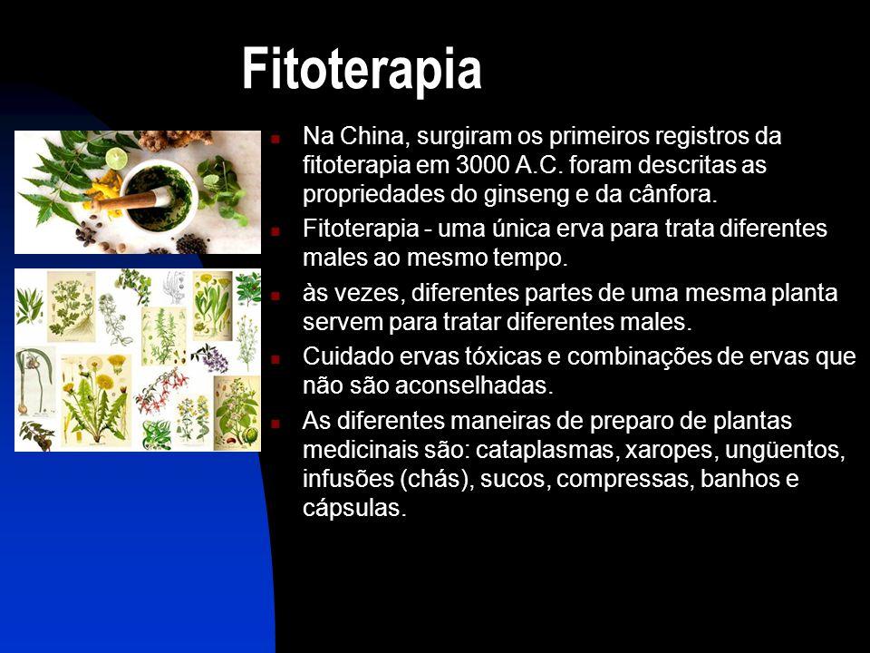 Fitoterapia Na China, surgiram os primeiros registros da fitoterapia em 3000 A.C. foram descritas as propriedades do ginseng e da cânfora.