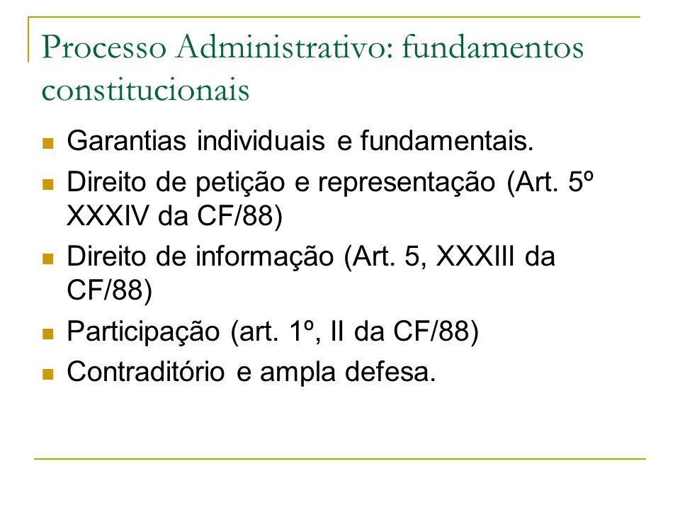 Processo Administrativo: fundamentos constitucionais