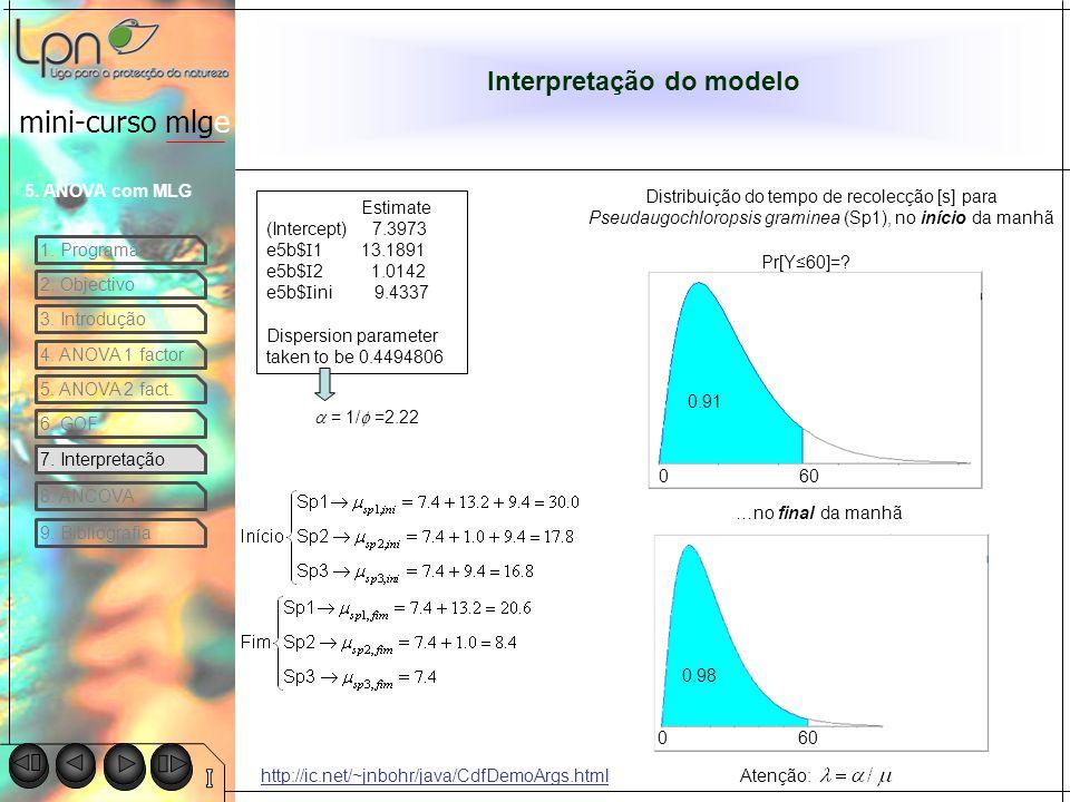 Interpretação do modelo