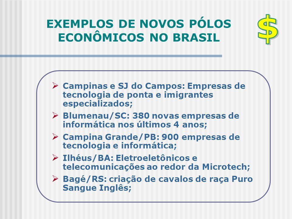 EXEMPLOS DE NOVOS PÓLOS ECONÔMICOS NO BRASIL