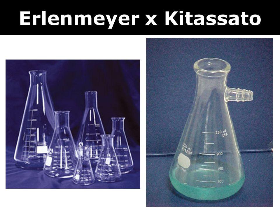 Erlenmeyer x Kitassato
