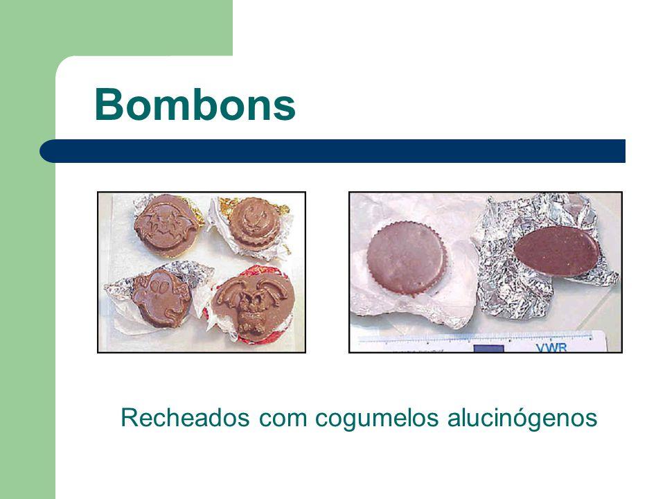 Recheados com cogumelos alucinógenos