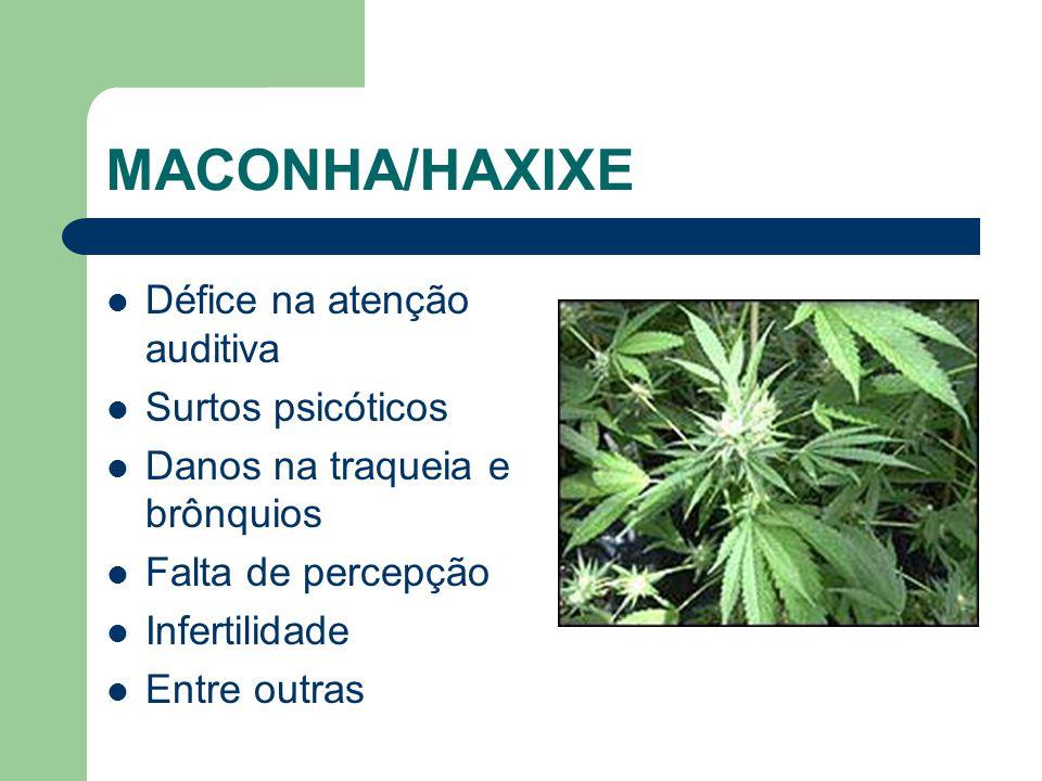 MACONHA/HAXIXE Défice na atenção auditiva Surtos psicóticos