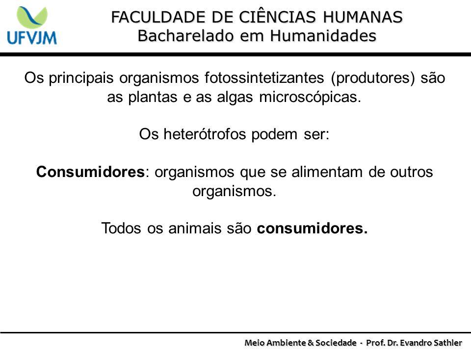 Meio Ambiente & Sociedade - Prof. Dr. Evandro Sathler
