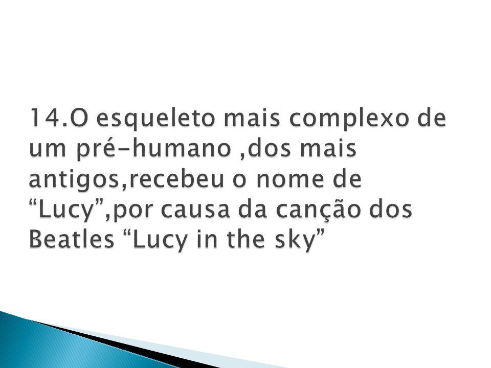 14.O esqueleto mais complexo de um pré-humano ,dos mais antigos,recebeu o nome de Lucy ,por causa da canção dos Beatles Lucy in the sky