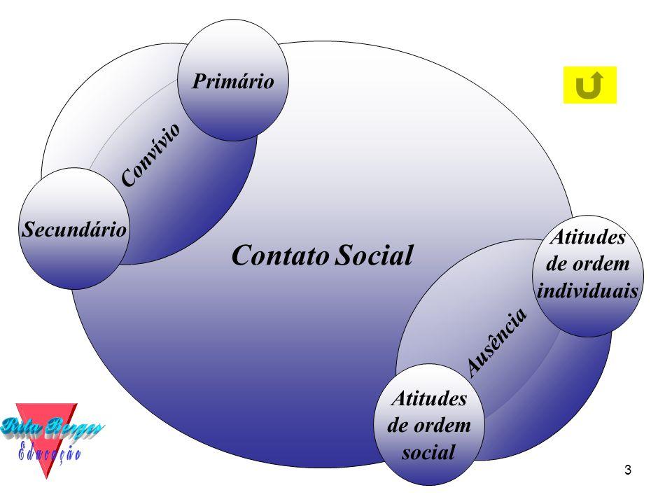Contato Social Primário Convívio Secundário individuais Ausência