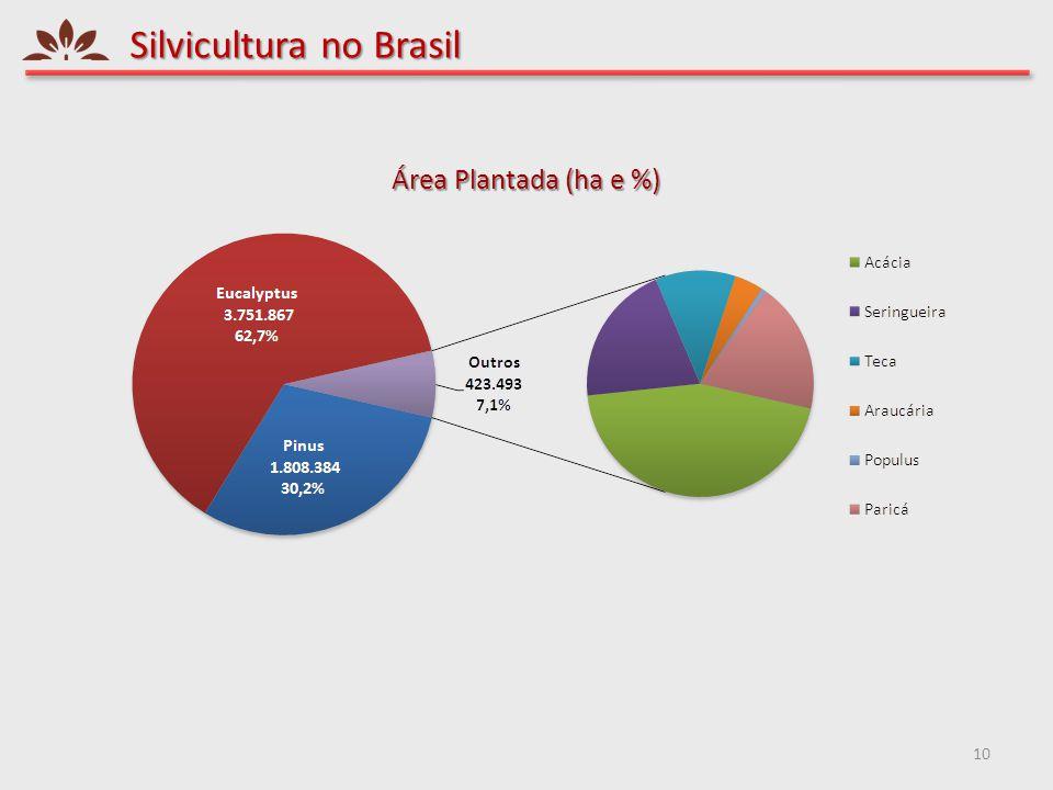 Silvicultura no Brasil