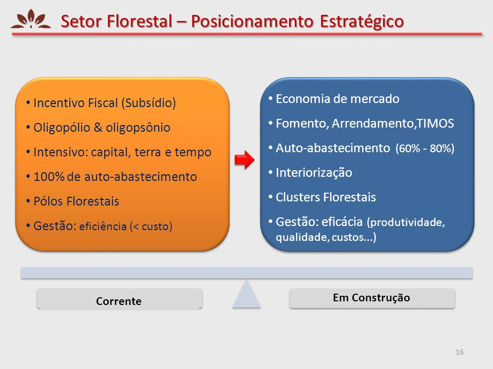 Setor Florestal – Posicionamento Estratégico