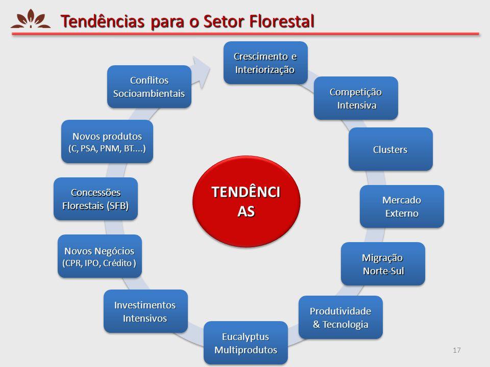 Tendências para o Setor Florestal