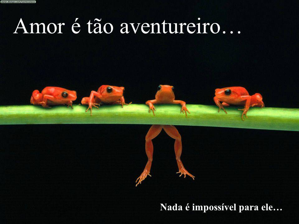Amor é tão aventureiro…