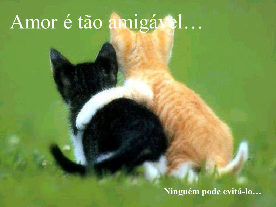 Amor é tão amigável… Ninguém pode evitá-lo…