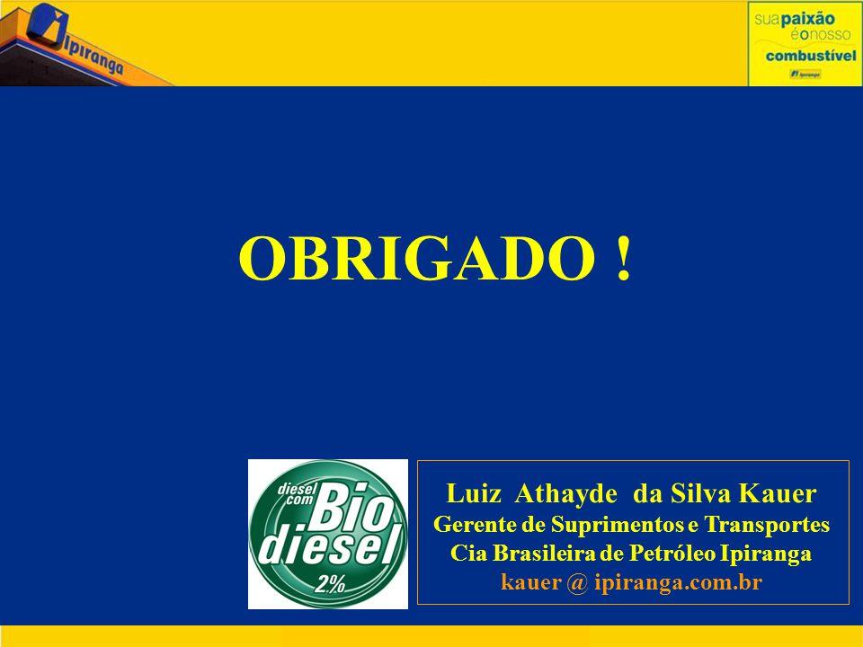 OBRIGADO ! Luiz Athayde da Silva Kauer