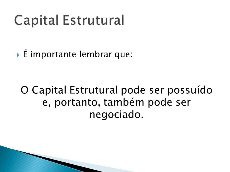 Capital Estrutural É importante lembrar que: O Capital Estrutural pode ser possuído e, portanto, também pode ser negociado.
