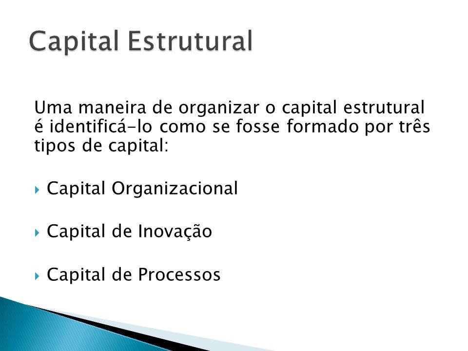 Capital Estrutural Uma maneira de organizar o capital estrutural é identificá-lo como se fosse formado por três tipos de capital: