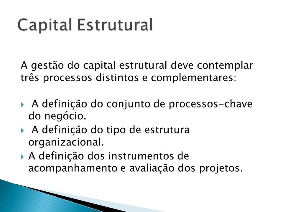 Capital Estrutural A gestão do capital estrutural deve contemplar três processos distintos e complementares: