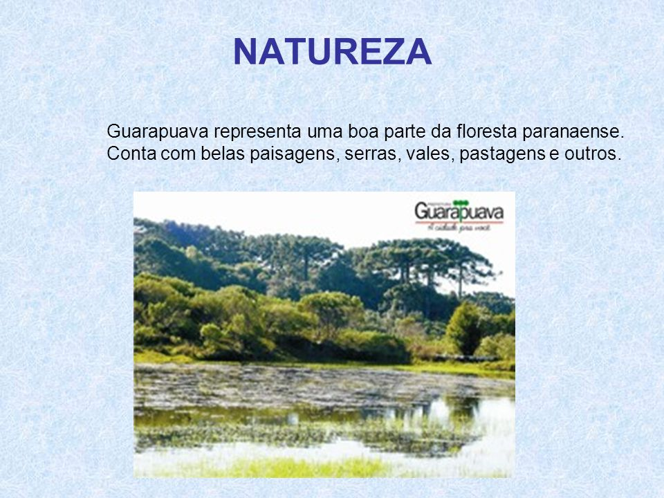 NATUREZA Guarapuava representa uma boa parte da floresta paranaense.