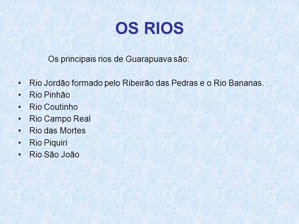 OS RIOS Os principais rios de Guarapuava são:
