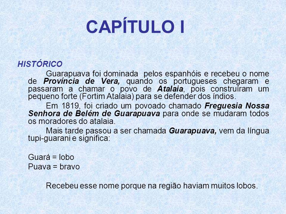 CAPÍTULO I HISTÓRICO.